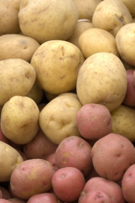 Potatoes What Is The Best Way To Store Potatoes Sara Moulton